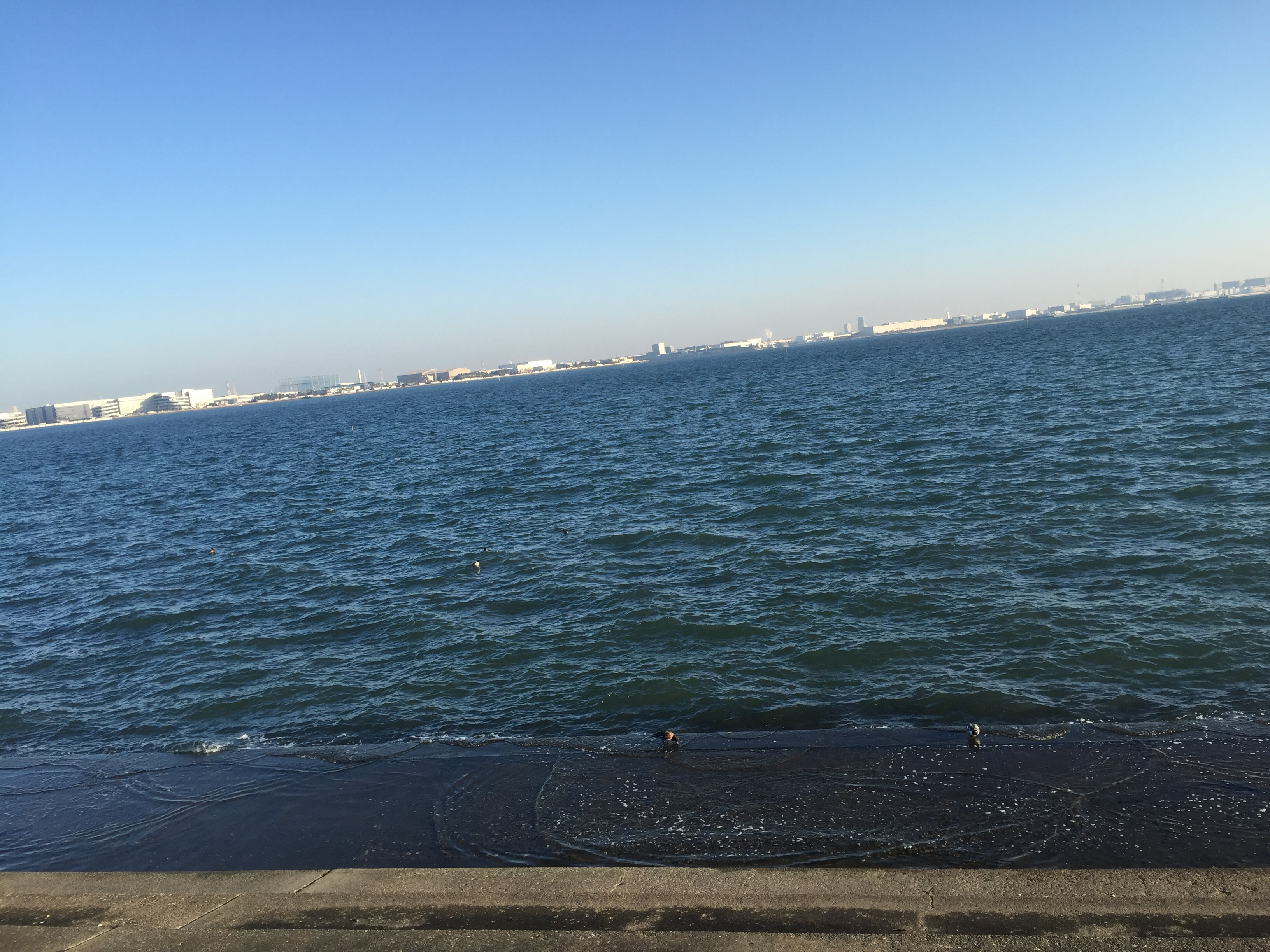 現場の近くが海だったので