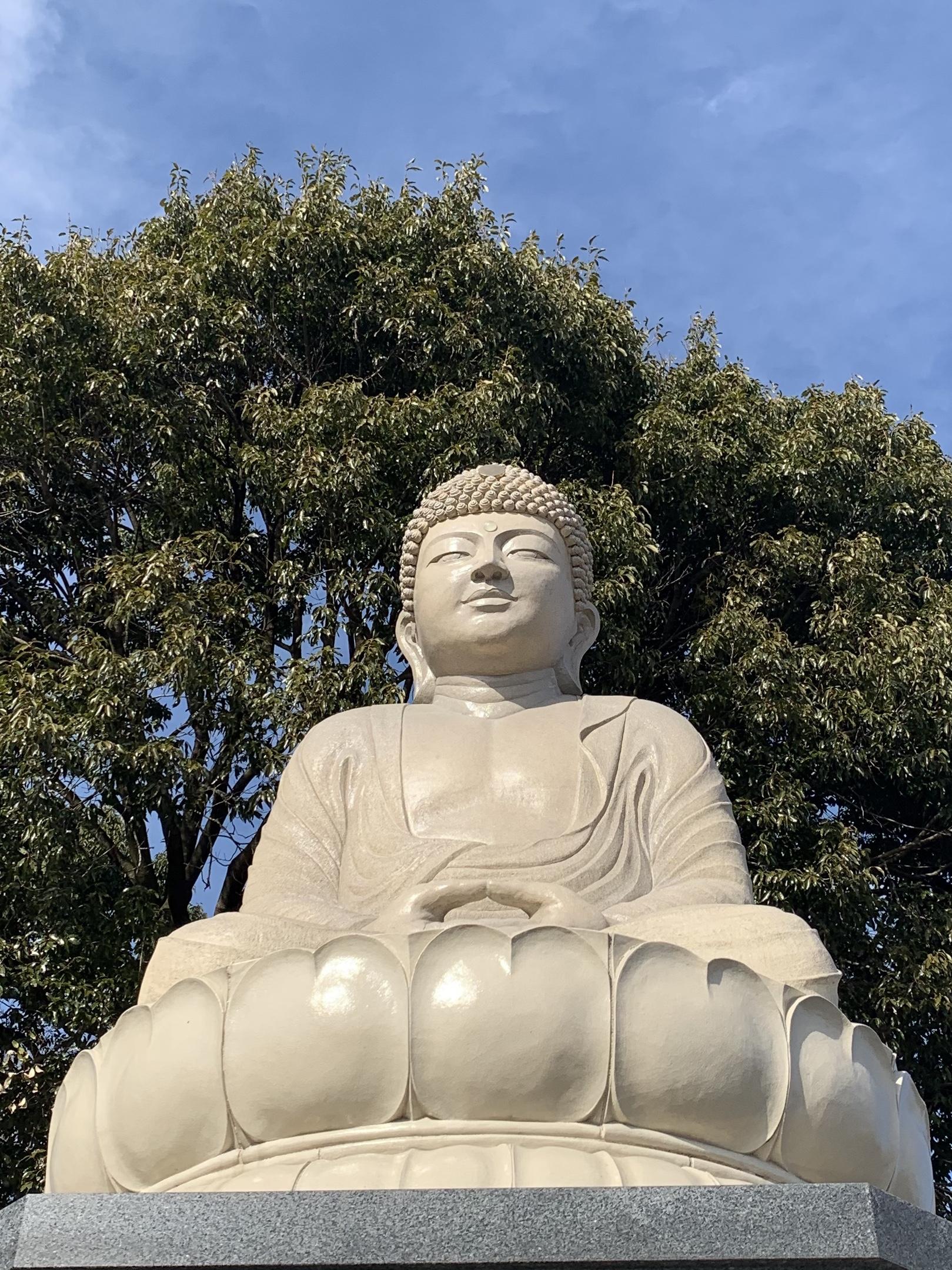 益子大仏(大日如来)益子町・観音寺