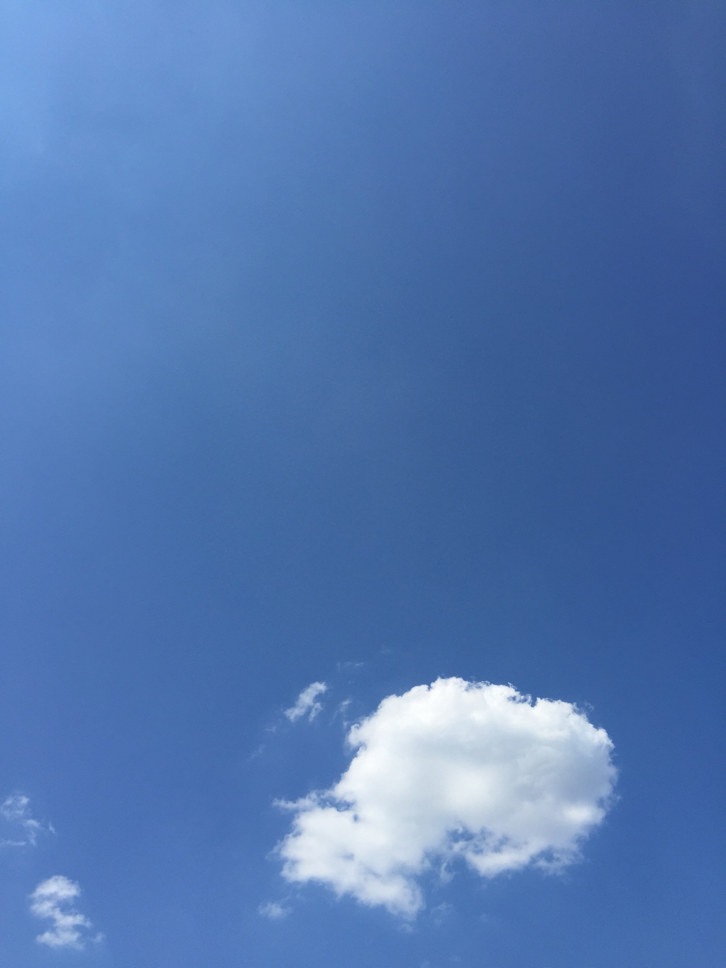 よか天気!