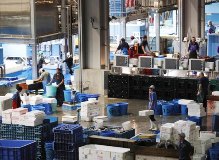 豊洲市場がオープン 2年遅れで築地から移転